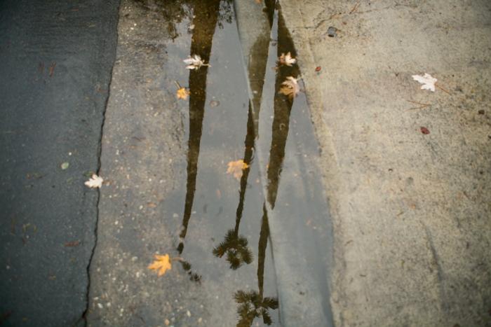 Rain_700